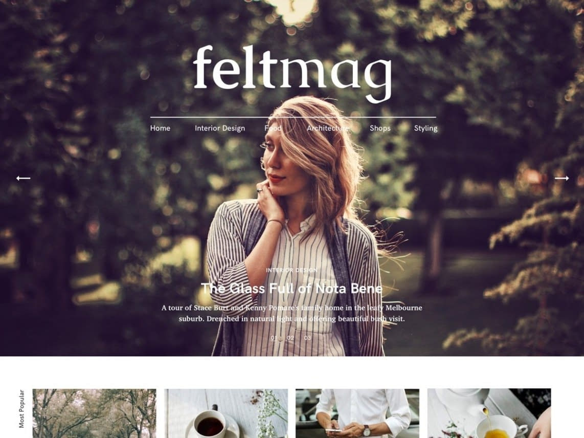 Felt Free responsive WordPress theme