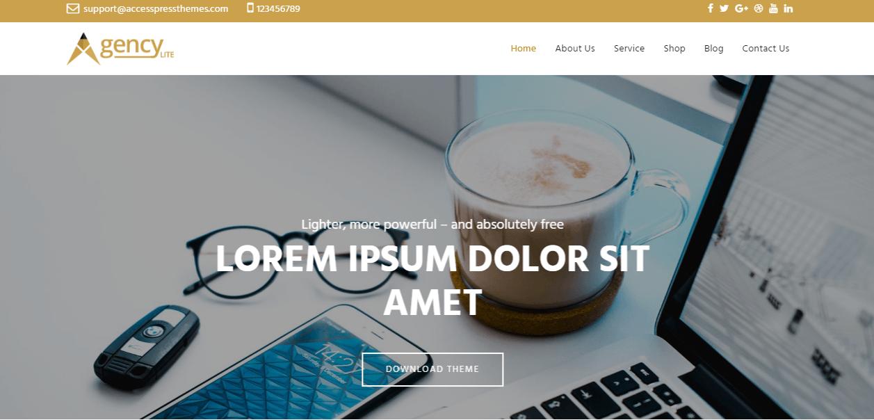 theme WordPress cơ quan